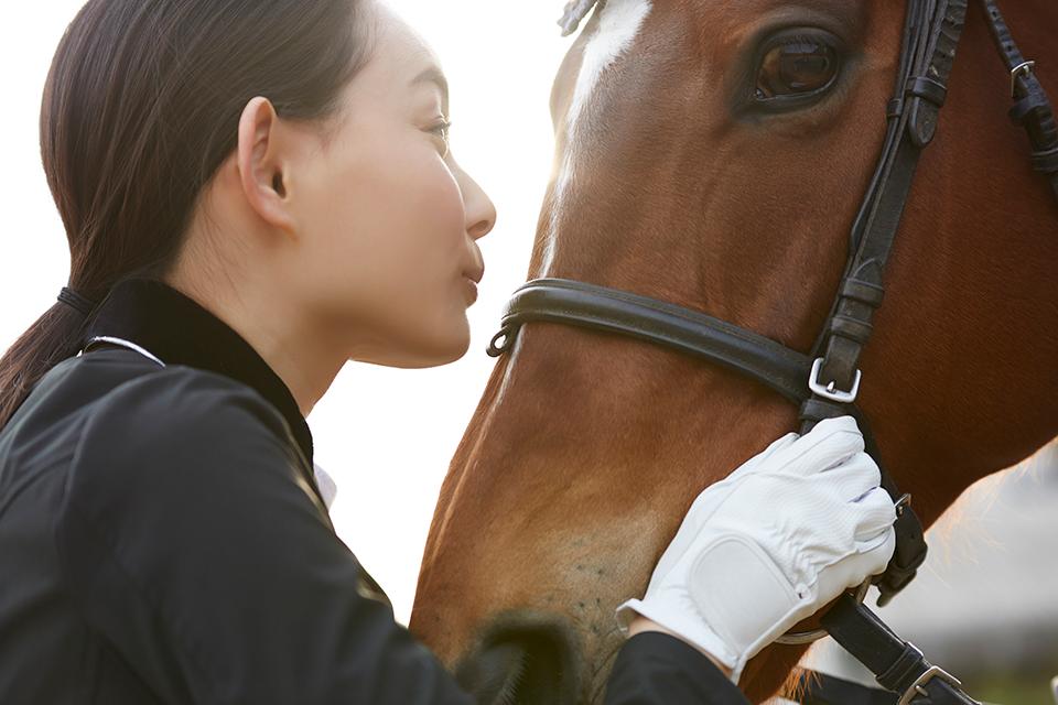 引退馬支援やホースセラピーで穏やかな生活・豊かな教育・確かな未来を。PreciousLog株式会社